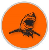 Sketch of a black shark on orange background